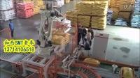 广东廉江市饲料厂和西码垛机器人自动生产作业视频