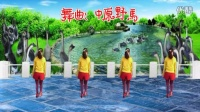 2016最新神曲 阿娜广场舞【鹅鹅鹅】正反面加分解