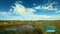 震撼!《天骄圣地 伊金霍洛》来自内蒙古的旅游大片