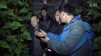 2016年2月24日辽宁省海城市大棚豆角回访—耕田乐