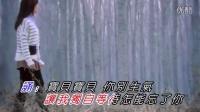 龙梅子-我爱爱爱爱爱着你  KTV
