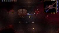 【泰拉瑞亚】一命人物专家boss流程(3)克苏鲁之脑