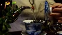 茶频道《百姓茶典》怎样辨别古树茶和小树茶