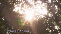 视频--远行汪国真(广东卫视标清版)20150429