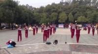 湖南桃源县纺城路社区健身球队表演第11套健身球