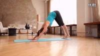 健身 瘦身操 Tara Stiles 初级瑜伽 - 柔韧度练习