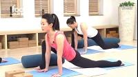 阴瑜伽-脾胃经的养护