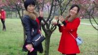 野牡丹健身队--铜陵市天井湖公园一日游(上)【枉凝眉】