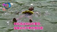 """游泳速成的""""三步一要素"""""""