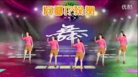 阿娜广场舞【杀猪刀】正反面加分解 神曲杀猪刀舞蹈视频