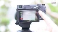 索尼a6300转接佳能口150-600mm镜头自动对焦测试