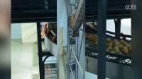 河南金凤自动化蛋鸡养殖设备展示