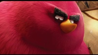 【猴姆独家】《愤怒的小鸟》曝光大红(pang)鸟特别预告片!