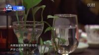 央视独家视频采访酒店遇袭事件当事人弯弯