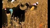 珍贵纪录片《欢庆十年》1