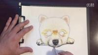 怎么画一只逼真的小狗