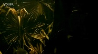 倫敦動物園水族館 銀光食人魚Pygopristis denticulata缸