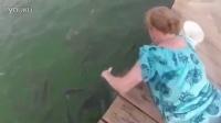 实拍:女子趴在桥上喂鱼 可怕的一幕 瞬间惊呆了...