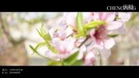 花絮--2016-04-09