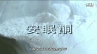 《致青春》教学片15-18岁版