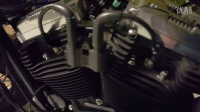 Sportster Forty-Eight 12(1)