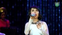 越南歌曲 Phố Vắng Em Rồi我不在小镇了-Cẩm Ly锦丽 -Tự Tình Quê Hương 5- (Live)抒情家乡5