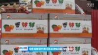 唐河县源潭镇:协力打造美丽乡村 多产业助推经济发展