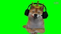绿屏抠像 绿幕抠像 绿幕抠图 搞笑视频幕后花絮 滑稽狗绿幕素材动画制作01