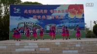 一团金银川镇激情广场大家乐胜利路社区舞蹈《草原情》