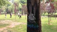 【乐游记3】曲江池遗址公园(青林重复,绿水弥漫)
