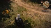 【小道式】巫师3 狂猎 ep3 找线索 找证人 做杀狮鹫的准备工作