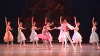 芭蕾 胡桃夹子部分 古巴国芭 Viengsay Valdes,Miguel A. Blanco