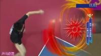 2014年亚运会乒乓球男单决赛 樊振东vs许昕_高清