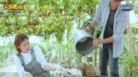 泰剧《王子学院之爱上冤家》中字第二集未删减无广告版@天府泰剧