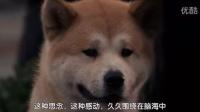 这部日本狗电影,看过的人,都哭了!