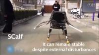 中国四足机器人显示令人惊叹的反应