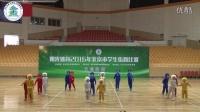【阳光体育2016年北京市学生街舞比赛】小学组舞蹈型街舞-东城区东四十四条小学