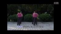 16步双人对跳广场舞 《爱情恰恰》