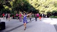 嘉鱼县文庙山公园广场舞    美丽的雪山姑娘
