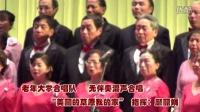 111无伴奏合唱《美丽的草原我的家》DV