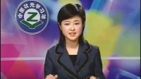 中国状元学习法-----小学篇 标清