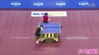 刘诗雯vs丁宁 2016日本公开赛女单决赛