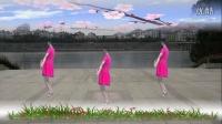 红领巾广场舞:《天在下雨我在想你》正面和背面演示