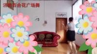 百合花广场舞 1280x720 2016-06-28 00-51-34