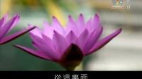【佛教纪录】传喜法师《永恒的微笑——柬埔寨之旅》第3集(全9集)(国语字幕版)