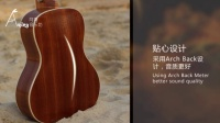 【阿青音乐坊】尤克里里合板琴Ukaku品牌C110测评ukulele