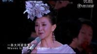 庆祝中国共产党成立95周年《不忘初心  继续前进》群英