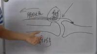 2016 07 02昭昭执业助理医师实践技能考试真题回顾与解析晚课程 真题解析课程