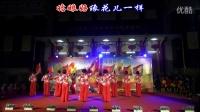 丰州代表队《我的祖国》(扇子舞)--南安市老体协庆祝中国共产党成立95周年暨红军长征胜利80周年广场舞展演