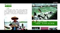 农业片头 农业宣传片 农产品宣传 宣传片 生态发展 上海企业宣传片 视频制作 农业企业宣传片 产品宣传片 广告短片